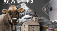 Welkom-Wallis2